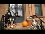 VIDEO : Get In The Halloween Spirit